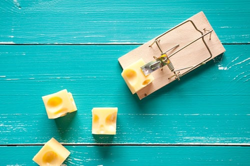 Mouse trap and cheese - tackling addiction online course