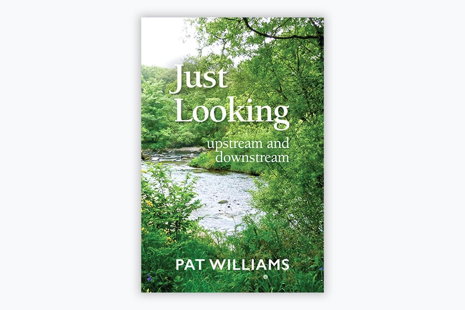 Just Looking – upstream and downstream - Book