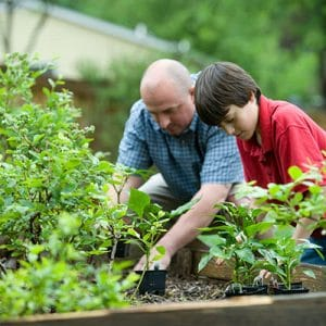 adult and child gardening
