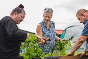 Photo of people working on allotment